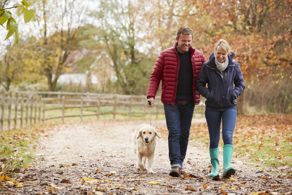 Mature Couple On Autumn Walk With Labrador - at what age do you become a spinster